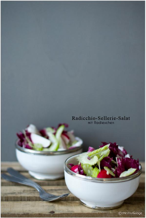 Radicchio-Sellerie-Salat mit  Radieschen | chestnutandsage.de