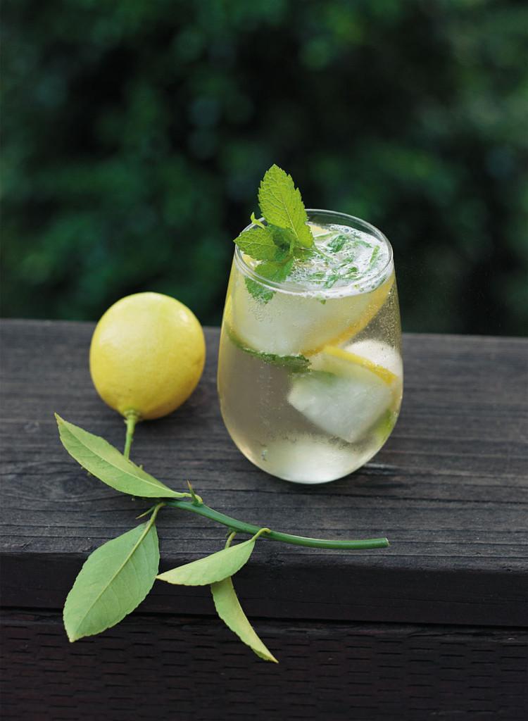 Ein Fest im Gruenen Zitronen-Basilikum-Mojito