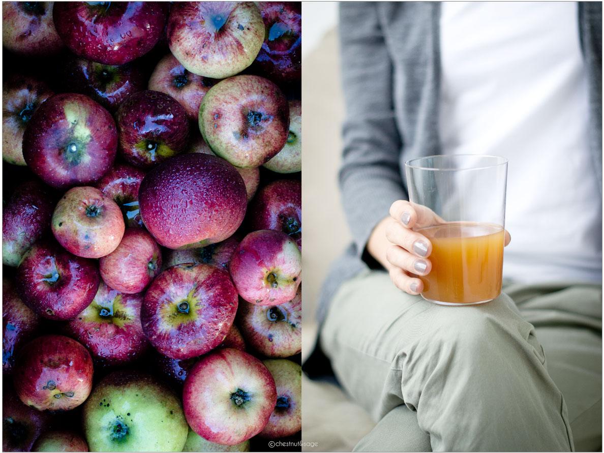 Apfelsaft | chestnutandsage.de