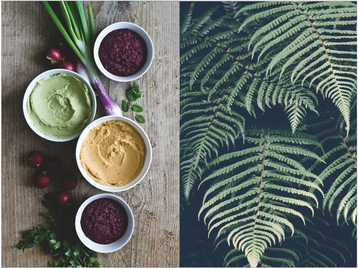 Hummus-Variation | chestnutandsage.de