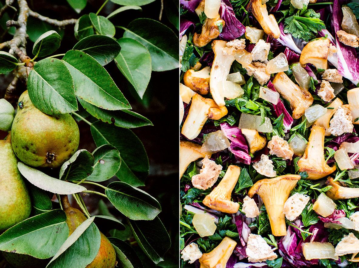 Salat mit Pfifferlingen und Gewürzbirnen | chestnutandsage.de