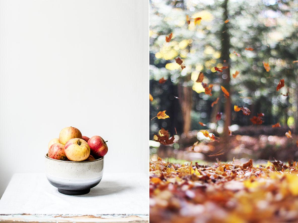 Herbstäpfel | chestnutandsage.de