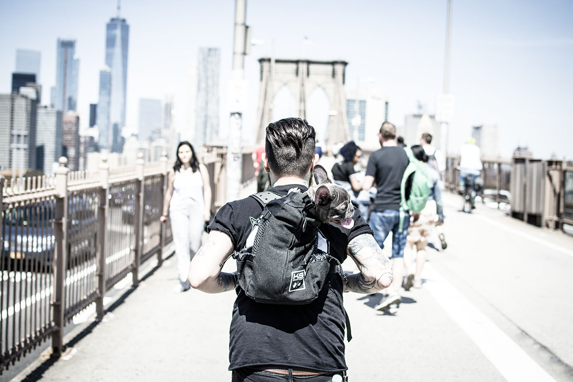 NYC | BrooklynBridge | chestnutandsage.de