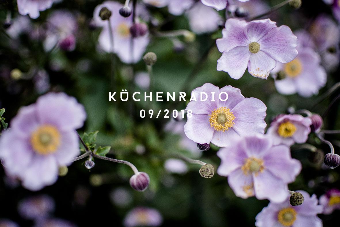 Küchenradio 09/2018