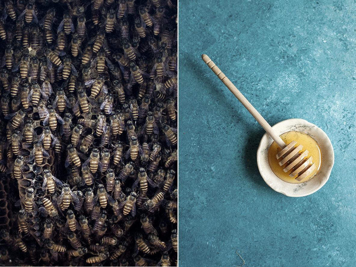 Balis Bienen | chestnutandsage.de
